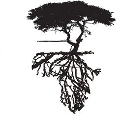 45 Ideas For African Tree Tattoo Search Life Tattoos, Body Art Tattoos, Sleeve Tattoos, African Sleeve Tattoo, Afrika Tattoos, Afro Tattoo, Evergreen Tree Tattoo, Evergreen Trees, Tree Roots Tattoo