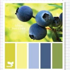 Blue berry color pallet-- for the new office downstairs