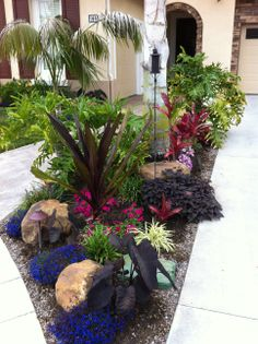 Color Blast I like the dark colors but still they stand out. Tropical Backyard Landscaping, Tropical Garden Design, Florida Landscaping, Garden Landscape Design, Front Yard Landscaping, Landscaping Melbourne, Landscaping Ideas, Shade Garden, Garden Planning