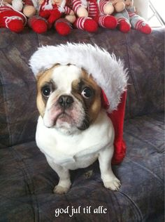 Coco : God jul