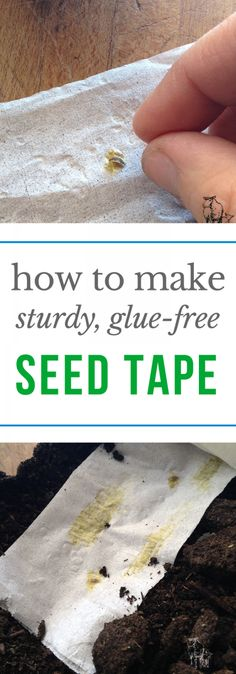 Gardening Vegetables Making seed tape without glue is easy and economical! via - Making seed tape without glue is easy and economical! Garden Yard Ideas, Easy Garden, Garden Layouts, Summer Garden, Garden Projects, Garden Tools, Garden Seeds, Planting Seeds, Seed Tape Diy