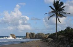 Barbados has some of the Top Beaches of the World in the Caribbean