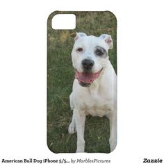 American Bull Dog iPhone 5/5S/5C #Case #Dog #Canine #Pets #iPhone #Case