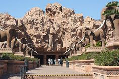1000 places to go before i die: Avenue of Elephants, Sun City, South Africa Sun City South Africa, Sun City Resort, Places To Travel, Places To See, Namibia, Beautiful Places In The World, Beautiful Scenery, Amazing Places, Beautiful Pictures