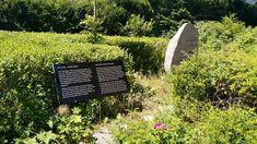 Im Feldblumenweg in Sasel befindet sich die Gedenktafel KZ-Außenlager Sasel. An diesem Ort inhaftierten die Nazis Frauen zur Zwangsarbeit. Hier erfahrt ihr mehr über den Hintergrund dieses Lagers in Sasel.