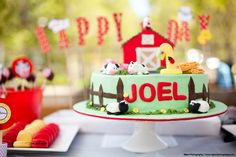 old macdonald cake | Old MacDonald Birthday Party Theme | Myka Photography