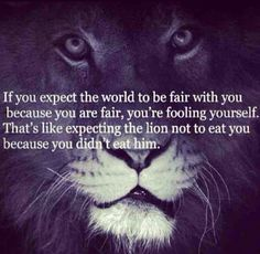#life #fair #quote #lion #truth