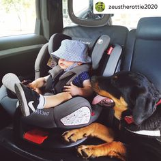Our Infababy MAX360 Isofix Car Seat Group 0123 🥰Thanks to zeustherottie2020 for sharing this great photo with us! The Infababy MAX360 car seat can be used for your baby in either rearward or forward facing direction and with different head height positions this car seat will grow with your child and ensure maximum comfort throughout all stages of life. This car seat is suitable from newborns up to the age of 12 years old making it great value for money. Available for preorder on our website! Travel System, 12 Year Old, Newborns, Great Photos, Baby Car Seats, Age, Money, Group, Website