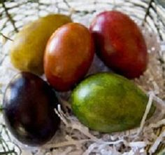 Easter Eggs made from gourds! Grown and created on a farm that lies at the roots of the Blue Mtn in central PA.