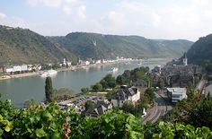 Rhine Valley Boat -  Fares are seasonal; during the summer, they run at about €31 for a one-day round-trip excursion. You can also take the boat one way and return by train.