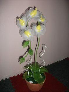 Góc dành riêng cho hoa voan - Page 11