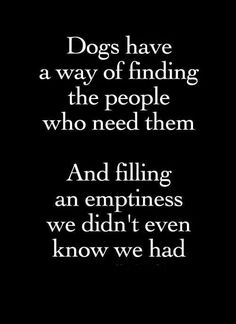 Dogs have a way of finding the people who meet them. And filing an emptiness we didn't even know we had.