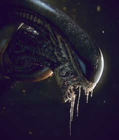 Image shared by Meek. Find images and videos about text, alien and xenomorph on We Heart It - the app to get lost in what you love. Les Aliens, Aliens Movie, Alien Vs Predator, Alien Creatures, Fantasy Creatures, Hr Giger Alien, Storyboard, Art Alien, Giger Art