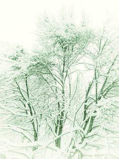 by akasurin on DeviantArt Snow, Deviantart, Outdoor, Outdoors, Outdoor Games, Human Eye
