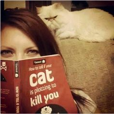 "The book only contains one page. It says ""Do you own a cat? If yes, they are plotting to kill you."""