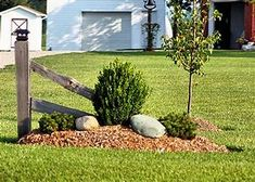 Image result for Simple Landscaping for Acreage