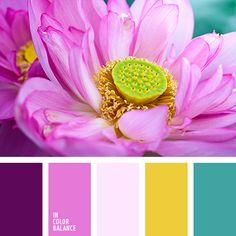 Color palette color schemes, Color palette for home decor Purple Color Palettes, Colour Pallette, Colour Schemes, Pink Color, Color Balance, Design Seeds, Color Theory, Pantone Color, Color Inspiration