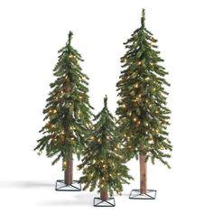 Pre Lit Evergreen Alpine Tree, Set of Three