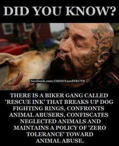 a biker gang......'Rescue Ink 'angels of animals -