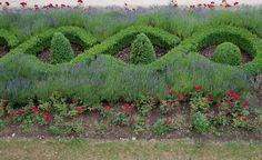 Arlon-Garden