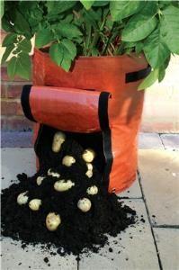 Obrázek Pytel na pěstování brambor
