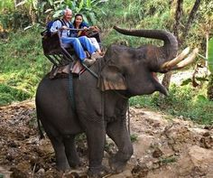 i wanna ride a elephant!