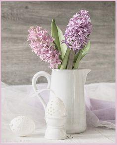 un petit air de printemps... | par odile lm