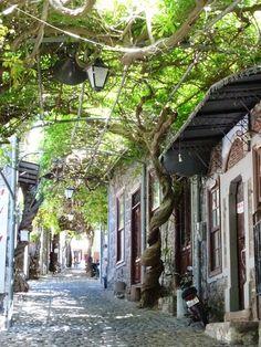 The Picturesque Village Of Molyvos, Lesvos island, Northeast Aegean sea, Greece Mykonos Greece, Crete Greece, Athens Greece, Greece Itinerary, Greece Travel, Places To Travel, Places To Visit, Travel Destinations, Voyage Rome