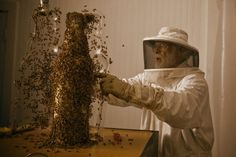 A Crazy Guy Messing With Bees Wouldn't Normally Interest Me. Then I Saw This And.. Whoa.