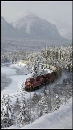 Winter Switzerland train travel, gigantic Source by nuritrob Winter Szenen, Canada Winter, Canadian Pacific Railway, Train Pictures, Banff National Park, Winter Pictures, Train Tracks, Winter Landscape, Belle Photo