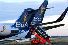 Bolivia Informa: BoA: 20% de crecimiento, 36.000 operaciones