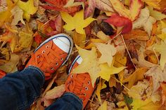 Note to self take a photo with the grands feet in the autumn leaves.
