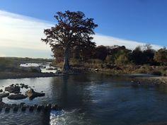 Corrientes en río Sabinas