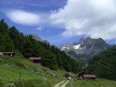 Valais, Wallis, Binn Valley, Binntal und Alp Freichi