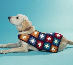 Granny Square dog coat - Project - The Spotlight Inspiration Room Granny Square Bag, Crochet Granny Square Afghan, Granny Squares, Square Blanket, Grannies Crochet, Knitted Dog Sweater Pattern, Cat Sweaters, Dog Jacket, Dog Wear