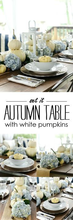 Fall table setting ideas with pumpkins. White pumpkin and hydrangea centerpiece for fall table. White Pumpkins, Painted Pumpkins, Fall Pumpkins, Fall Table Settings, Thanksgiving Table Settings, Craft Projects For Kids, Diy Projects, Shabby Chic Fall, Easy Fall Wreaths