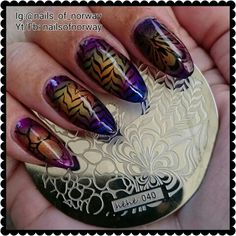 Ombre look with stamping from this plate.