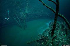 Fiume sottomarino, Cenote Angelita, México