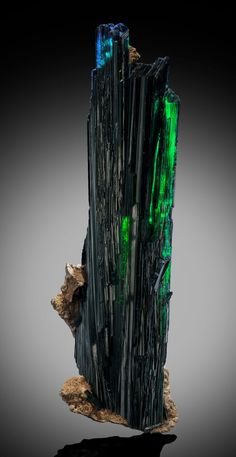 VIVIANITE Huanuni Mine, Huanuni, Dalence Province, Oruro Department, Bolivia  As Vivianite specimens go, this is a monster. The longest crystal in the group is a whopping 13.38 inches (34 cm) in length - well over a foot! The color is deep green with blue overtones, and there are transparent sections. There is a small amount of typical Sulfide matrix and minor indications of wall contact on the backside along with a certain amount of nicks on a few exposed edges.