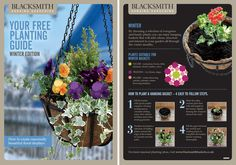 Your Free Planting Guide: Winter By choosing a selection of evergreen and hardy plants you can enjoy hanging baskets that will add colour, structure and interest to your garden all through the winter months.