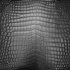 #crocodylusniloticus, (African Nile crocodile) selectively sourced by #METTIQUE from the best French tannery in Singapore.   WWW.METTIQUE.COM