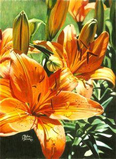 Dianna  Soisson Colored Pencil Art