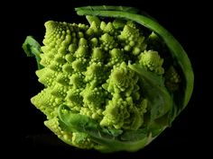 Romanesco broccoli, showing fractal forms