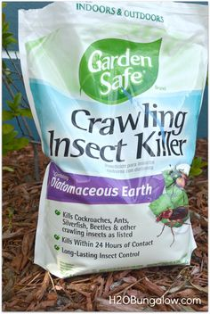 Organic Pest Control That Works - available at Lowe's & Home Depot.  Safe for pets & other animals.  Kills ants, roaches, etc.