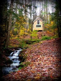 a little yellow cabin and a cascading brook - i'm ready to move in!