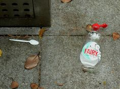 Litter - Fairy by ramson, via Flickr
