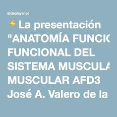 """⚡La presentación """"ANATOMÍA FUNCIONAL DEL SISTEMA MUSCULAR AFD3 José A. Valero de la Merced."""""""