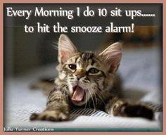 Photos of cute yawning kittens. Photos of cute yawning kittens. Cute Cats, Funny Cats, Funny Animals, Cute Animals, Animal Jokes, Crazy Cat Lady, Crazy Cats, Cat Yawning, Gatos Cats