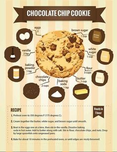 Here Are 22 Diagrams For Anyone Who's Obsessed With Dessert is part of Cookies recipes chocolate chip - To dessert or not to dessert Is there any question Choco Chip Cookies, Perfect Chocolate Chip Cookies, Choco Chips, Chocolate Cookie Recipes, Dessert Chocolate, White Chocolate, Sugar Cookies, Delicious Desserts, Dessert Recipes