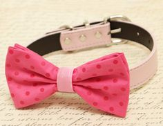 Hot pink dog bow tie, Bow tie attached to dog collar, Pet wedding accessory, Polka dots bow tie, dog collar, Dog birthday gift, Soft pink